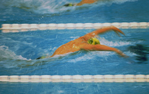 Natation_sample6.jpg